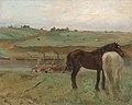 Horses in a Meadow.jpg