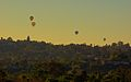 Hot Air Balloons over Olivenhain CA.jpg