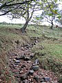 Hothill Burn - geograph.org.uk - 596606.jpg