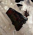 Hubnerite-Quartz-184738.jpg