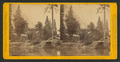 Huching's Hotel and Sentinel Rock, Yo Semite Valley, by John P. Soule 3.png
