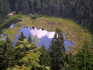 Northern Black Forest - The Huzenbacher See, one of the tarns in the Northern Black Forest