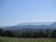 Veduta del bosco di Sesera