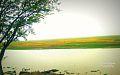 In fornt Of View Of Horipur Raj Bari, Hovigonj.jpg