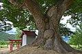 Inari Shrine(Branch) - 稲荷神社 - panoramio (1).jpg