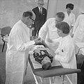 Injecties tegen hondsdolheid, Krijntje Tang op de operatietafel voor een spuit, Bestanddeelnr 914-4151.jpg