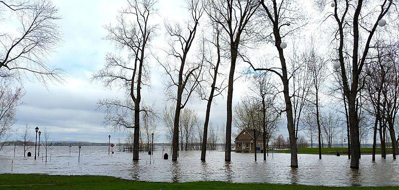 File:Inondations 2017, Parc de la Maison-Valois 2.jpg