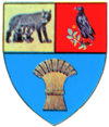 Coat of arms of Județul Cluj