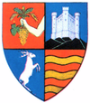 Coat of arms of Județul Sălaj