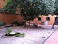 Interiors Casa Duran Sabadell durant FMS2012 (99).JPG