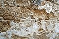 Israel-04808 - Old Plaster (33626099536).jpg