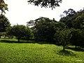 Itupeva - SP - panoramio (1608).jpg