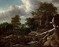 Jacob Isaaksz. van Ruisdael 016.jpg