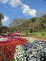 Jardim Botânico Jani Pereira (5).jpg