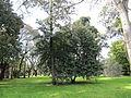 Jardim Botanico Tropical (14005288722).jpg