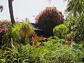 Jardin Majorelle 010.JPG