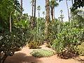Jardin Majorelle 018.JPG