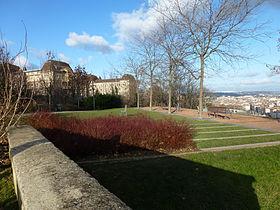 Jardin des curiosit s wikip dia - Articles de jardin ...