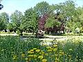 Jardin public de Saintes.jpg