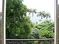 Jardins do Museu Nacional - Vista da Janela.jpg