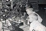 Jeb and Neil Bush December 1956 (2842).jpg