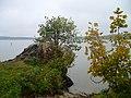 Jezioro Pluszne Wielkie - panoramio (6).jpg