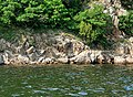 Jingbo Lake 鏡泊湖 - panoramio (1).jpg