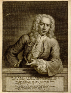 Johannes Burman Dutch botanist