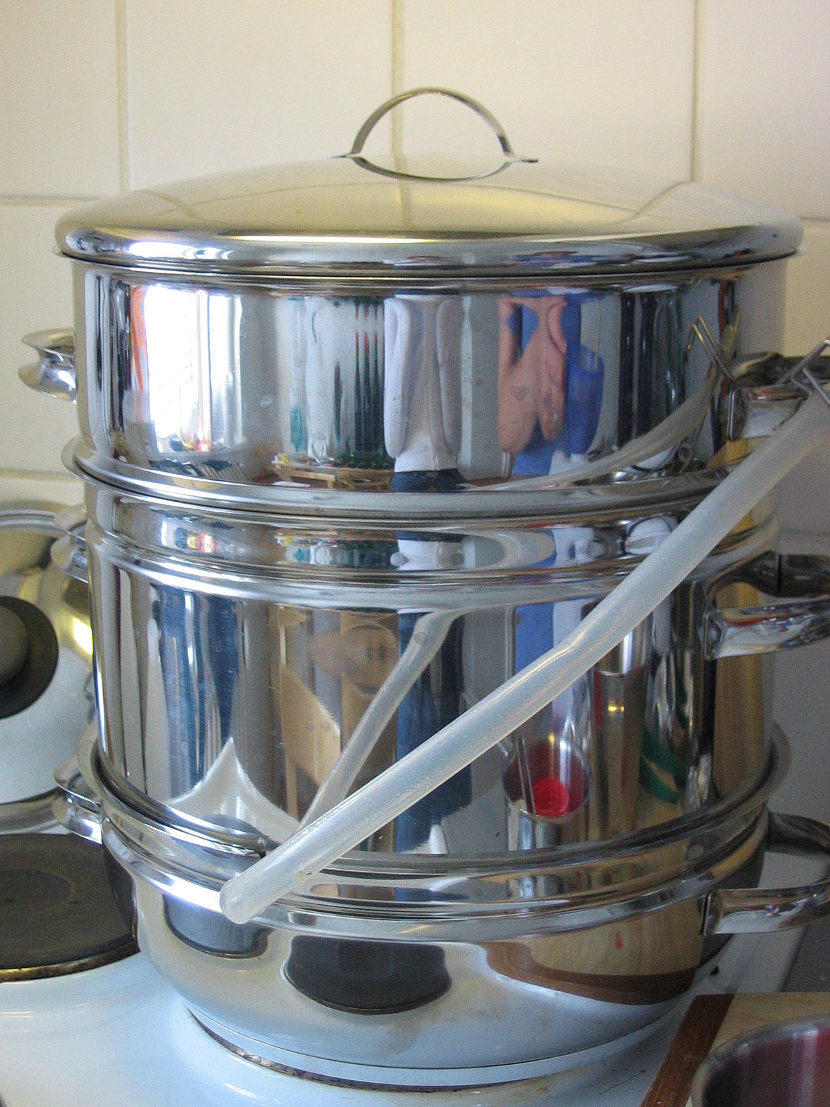 steam juicer wikipedia
