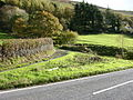 Junction with A470 - geograph.org.uk - 601201.jpg