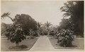 KITLV - 11805 - The Botanical Garden in Singapore - circa 1890.tif