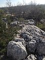 KUZEY DOĞU GÜNEY BATI UZANTILI KALIN TABAKALI JURA KRATESE ÜST JURA ALT KRATESE NEOJEN YAPI ÜZERİNE ÇÖKELME - panoramio.jpg