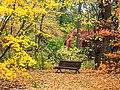 Kaisaniemen puutarha ruskan vareissa.jpg