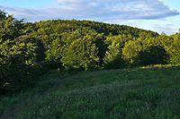 Kamenná lúka, Národný park Poloniny.jpg