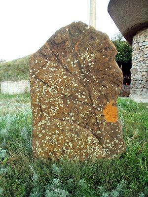 Kamyana Mohyla - A stone with petroglyphs.