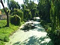 Kanał Obry z mostu - panoramio.jpg