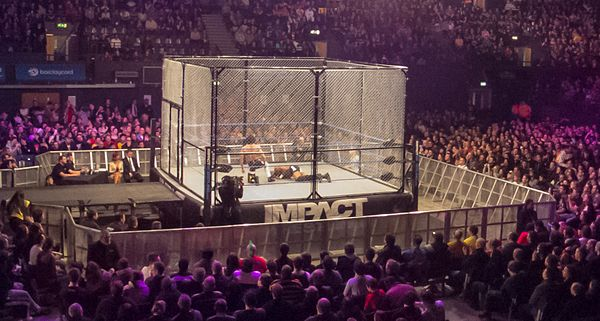 A steel cage match at a 2013 Impact Wrestling event Kenny King vs. Zema Ion - Dark Match.jpg