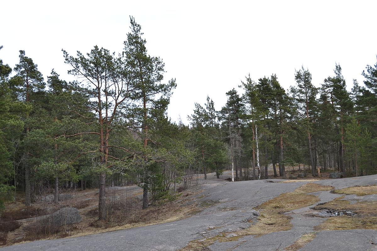 Centraal Park van Helsinki - Wikipedia