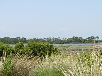 Kiawah Island, South Carolina - The marshes at Kiawah Island