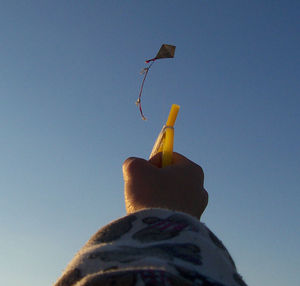 Kite flying.jpg
