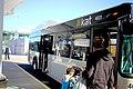 Knoxville Area Transit (26932007139).jpg