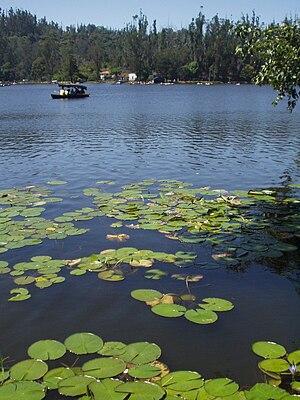 Kodaikanal Lake - Image: Kodaikanal lake