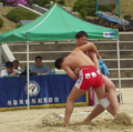 Korea-Seoul-Ssireum-Korean wrestling-crop.png