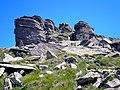 Kráľova hoľa - staviteľka Príroda - panoramio.jpg