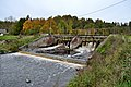 Kuusiku mõisa vesiveski tamm Vigala jõel.jpg