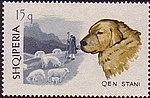 Kuvasz Albania stamp.jpg