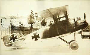 L.F.G. Roland D.III.jpg