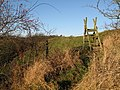 Ladder stile on the footpath to Old Town - geograph.org.uk - 635887.jpg