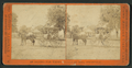 Lakeport, California, by A. J. Everett.png