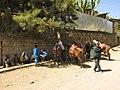 Lalibela (6821619037).jpg